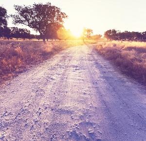 Road in field