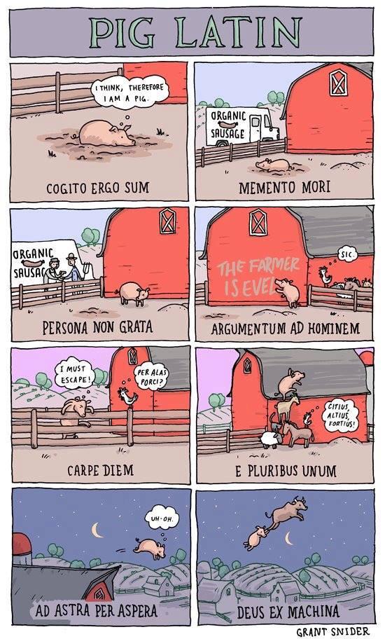 Pig Latin Humor