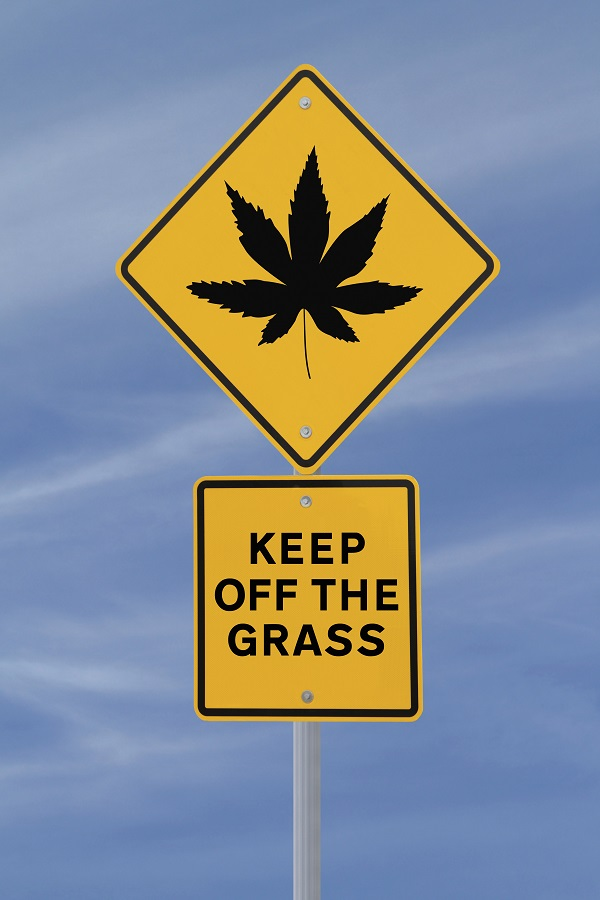 keep off the grass marijuana
