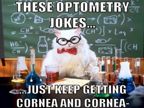 Cat Vision Joke