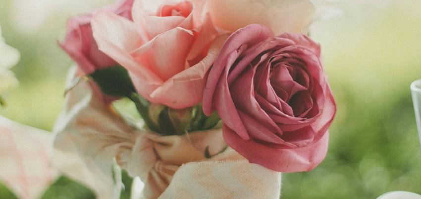 valentine flower love