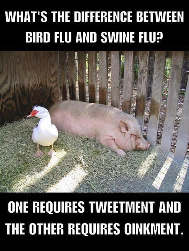 flu joke