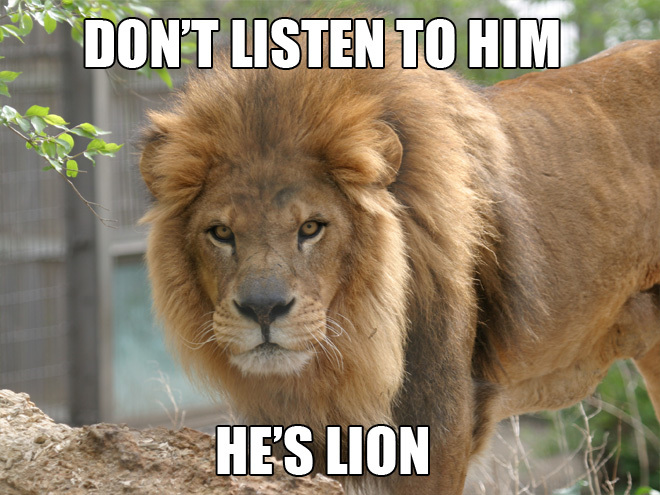 animal lion joke