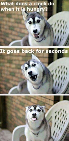 dog-clock-humor